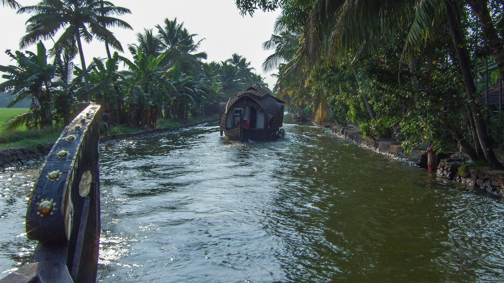 Backwaters turu yapan tekneler