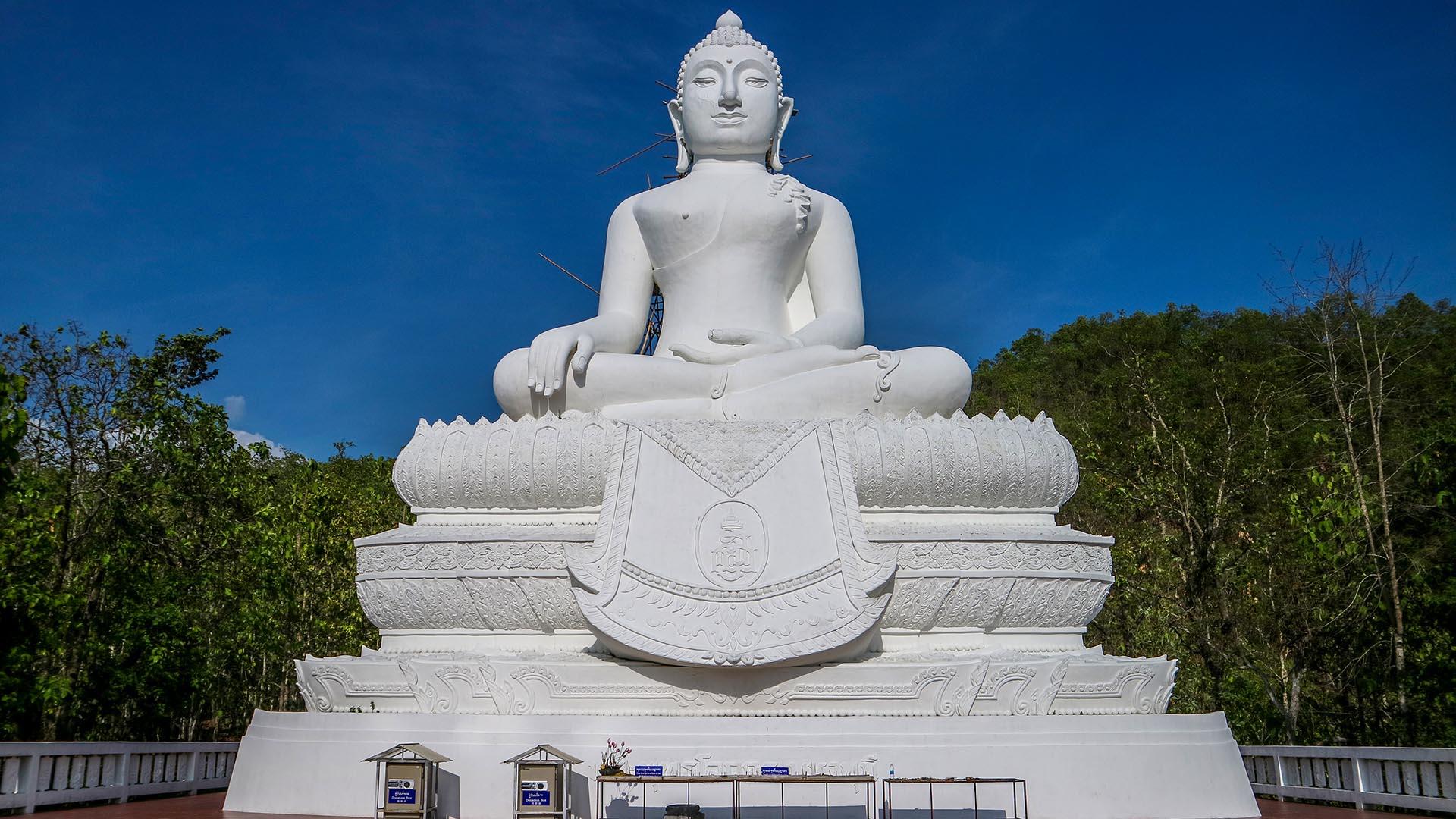 Beyaz Buda, Pai