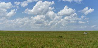 Masai Mara Milli Parkı